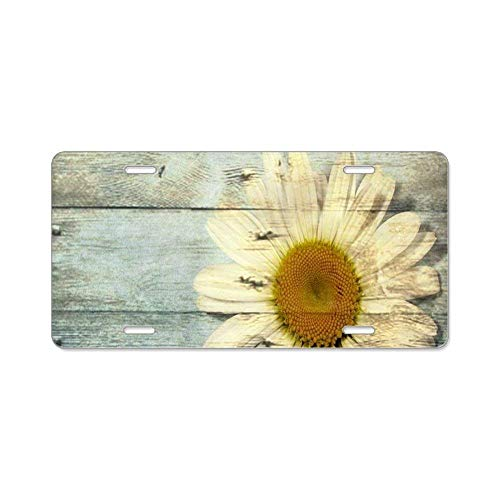 Ganheuze Stylish Design Car Front License Plate£¬Shabby Chic Country Daisy Auto Tag Frame 6
