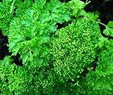 Bobby-Seeds Kräutersamen Petersilie, Smaragd Portion