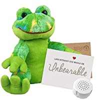 """20 Second Recordable Funky Frog 8"""" Message Teddy Bear"""