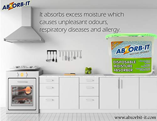 Abzorb-it Disposable Moisture Absorber - 300g