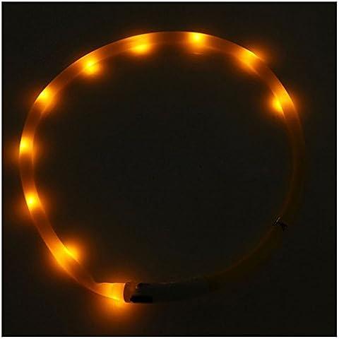 Collar de perro de luz LED parpadeante - TOOGOO(R)Collar de perro de luz LED parpadeante de USB de banda de luz de seguridad impermeable recargable de animal domestico de color naranja