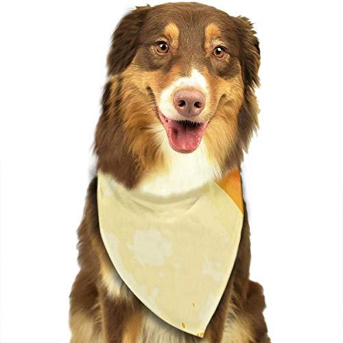 dfegyfr Halloween Pet Scarf/Creative Dog Bandanas