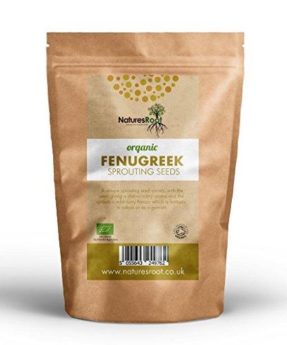 Nature Root Bockshornklee Bio Samensprossen - Superfood | Nicht GVO | Microgreen Sprossen (1kg) (Aminosäuren, Die Nicht Gvo)