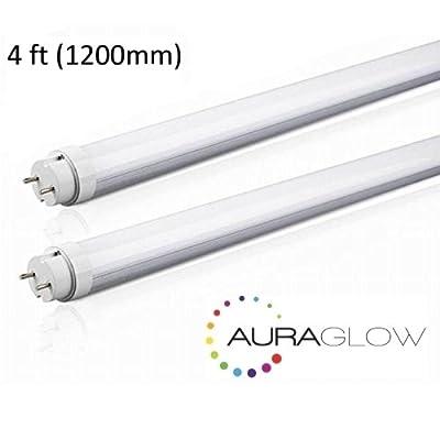 4ft.Tube.Light