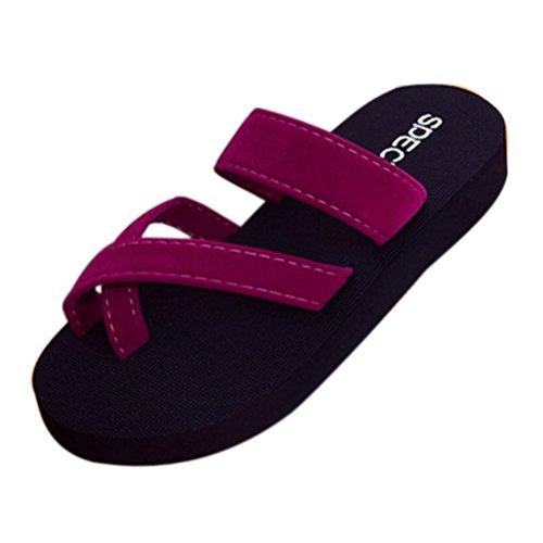 Chanclas Mujer Verano,Las mujeres de verano flip flops casual zapatillas plana sandalias playa zapatos de punta abierta LMMVP (38(EU), Vino)