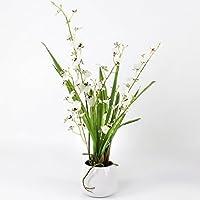 artplants - Orquídea Oncidium artificial, 2 ramas, blanco-marrón, 50 cm - Flor artificial / Planta sintética