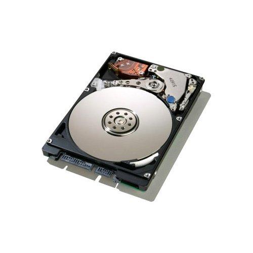 Series Festplatte (Arch Memory Festplatte für Dell Inspiron-Serie (160GB, SATA, 6,35cm (2,5Zoll)), 1Stück)