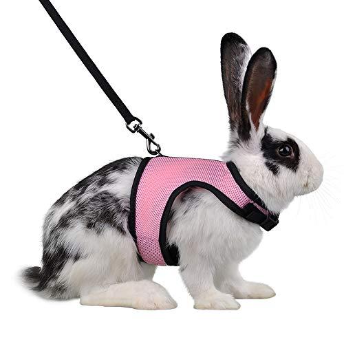 Qchengsan Weiches Geschirr mit Leine für Kaninchen, Kaninchen, elastisch, für Haustiere, Kaninchen, Leine, Haustiere, Kaninchen, Leine