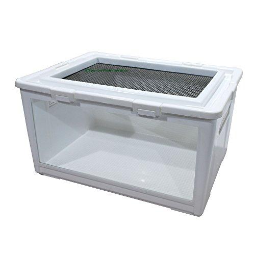 Aquarium-Plüderhausen Reptilien Box aus Kunststoff mit Glasscheibe 50x35,5x27 cm, Kükenaufzuchtbox, Transportbox, Aufzuchtkäfig