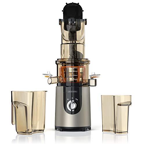 Entsafter Slow Juicer - Saftpresse Kaltpresse - 1l Gesamtkapazität - Gemüse und Obst - Schnelle Saftproduktion mit hoher Saftausbeute - für Obst und Gemuese - Spülmaschinenfestes - ruhiger Motor
