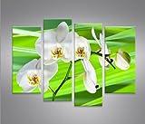 Green Flower Frühling Blumen 4er Quadri moderni intelaiati - pronti da appendere - Fotografia formato XXL - Stampa su tela - Quadro x poltrone salotto cucina bagno mobili ufficio casa