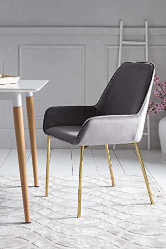 SalesFever Esszimmer-Stuhl Linnea in Grau   Polsterstuhl in Samt-Optik mit Armlehnen   Gestell Messing-Farben   Sitz- und Rückenpolsterung