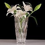 C&S Transparente Kristallglas-Blumen-Anordnen-Vasen-Haushalts-Dekorations-Wasserpflanzen-Behälter