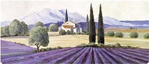 Akzente Wolf 92523 Tapis de cuisine avec motif Provence Multicolore 50 x 120 cm