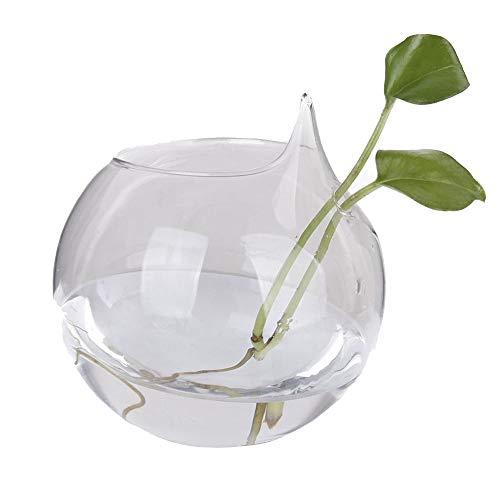 vientiane Florero de Cristal Colgante,Terrario Transparente del Vidrio de Borosilicate,Maceta Las Plantas para Succulents/Air Macetero Contenedor Decoración de la Boda de la Oficina en el Hogar