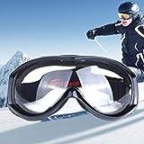 HB903 Unisex Anti-Fog Windprooof UV Protection Goggles with Adjustable Strap (Polished Black+Transparent)
