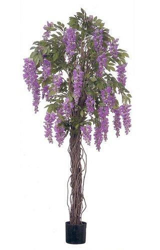 Arbre artificiel Glycine Violet – 5 m de haut avec tronc en bois véritable et grandes fleurs.