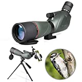 20-60X60 Longue-Vue Télescope monoculaire Birdwatching Imperméable avec Adaptateur de téléphone + Trépied pour Le tir à l'arc, Safari Sightseeing, Observation des étoiles, Camping