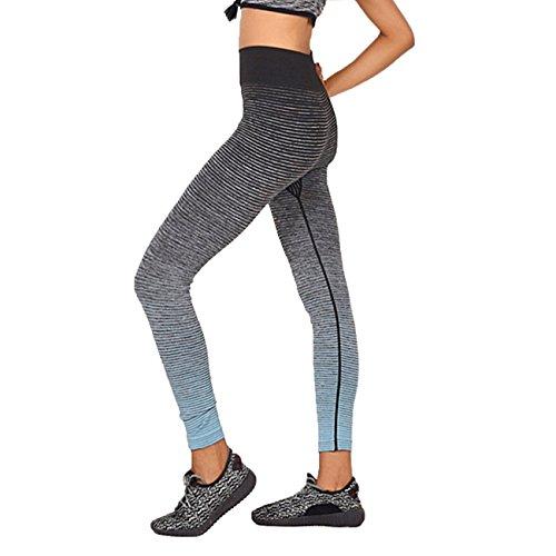 Femme dégradé Rayures Pantalon de yoga minceur entraînement Leggings Taille haute Jogging Sports Collants bleu