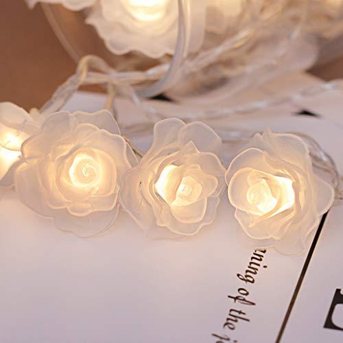 2.5m 20led Rose Batterie Licht Blume String Fee Licht Dekoration Lampe Warmweiß Weiße Farbe (Geld)