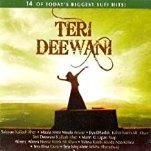 Teri Deewani: 14 of Todays Biggest Sufi Hits