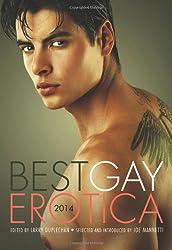 Best Gay Erotica 2014