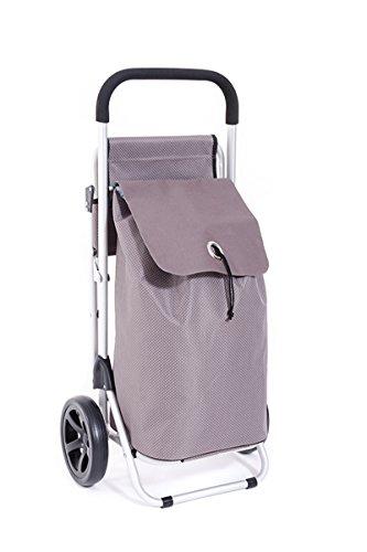 BigDean Luxus Trolley Einkaufsroller mit Integriertem Sitz Einkaufswagen Aluminium 38 Liter Senioren Camping Festivals Picknick