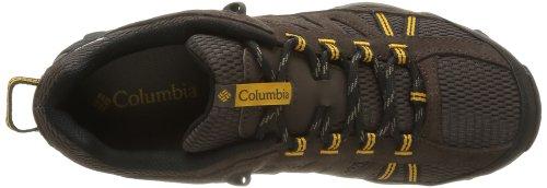 Columbia NORTH PLAIN BM3894 Herren Trekking & Wanderschuhe Braun (Stout, Squash 229)
