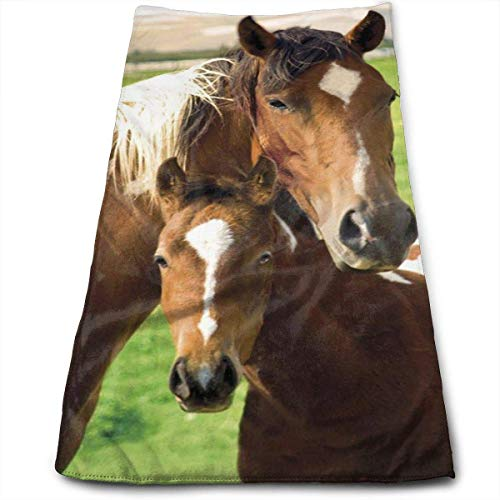 DAICHAI Serviette Horses Mare and Foal Bath Towels for Bathroom-Hotel-Spa-Kitchen-Set Circlet Egyptian Polyester Highly Absorbent Hotel Quality Towels