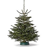 Echter Premium Weihnachtsbaum frisch geschlagen - Höhe ca. 130 bis 140 cm - Nordmanntanne Christbaum - Der Smarte Sven - handverlesen aus Deutschland