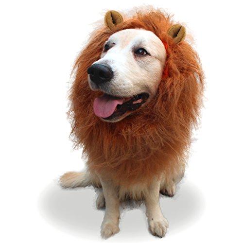 ng Pet Hunde Kostüm Löwe Mähne Perücke Haar für mittlere bis große Hunde Weihnachten Thanksgiving Halloween Contest mit niedlichen Ohren (Ihr Haar Wird Grau Halloween)