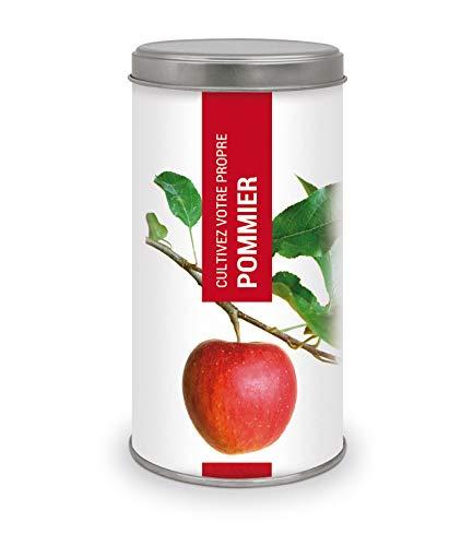 Garden Pocket - Cultivez votre propre POMMIER - BONSAI