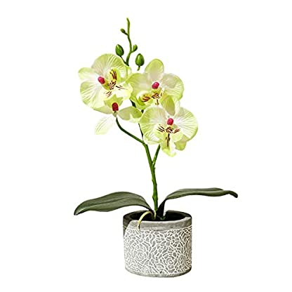 pushfocourag Plantas Artificiales 1Pc Flor Artificial Mariposa Orquídea Cemento Maceta Bonsái Hogar Jardín Fiesta Decoración