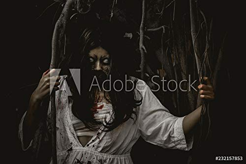 Wunschmotiv: Portrait of asian woman make up ghost face with blood,Horror scene,Scary background,Halloween poster,Thailand people #232157853 - Bild als Foto-Poster - 3:2 - 60 x 40 cm / 40 x 60 cm