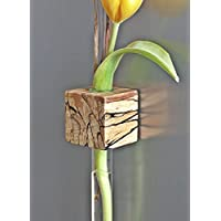 Kühlschrankmagnetvase Buche gestockt Magnetvase Blumenvase