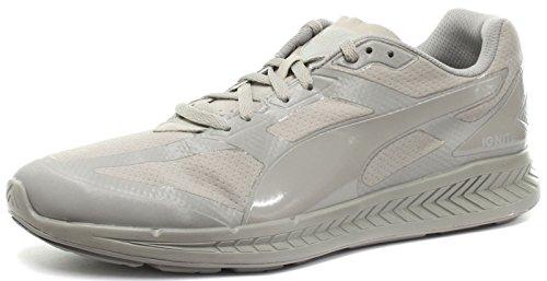 Puma Ignite Matt & Shine Unisex Chaussures courses � pied, Gris