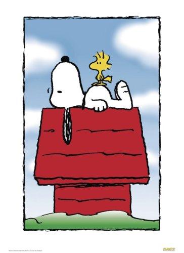 Peanuts Poster (68,5cm x 101,5cm)