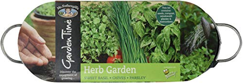 Mr Fothergill's 24804 Garden Time Herb Garden Windowsill Kit - Green