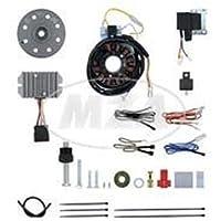 Lichtmagnetzündanlage 12V 150W mit integrierter vollelektronischer Doppelzündung für ES125, 150, ETS125, 150, TS125, 150