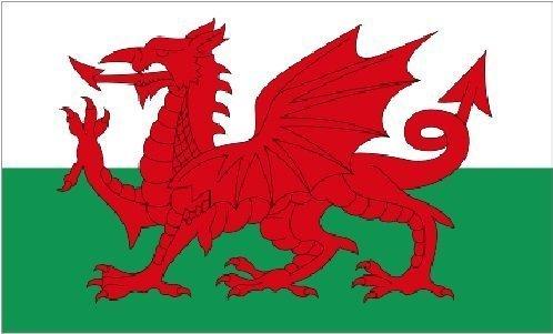 Giant Welsh Dragon (Walisischer) - 2.44 meters x 1.52 meters Flagge und BANNER