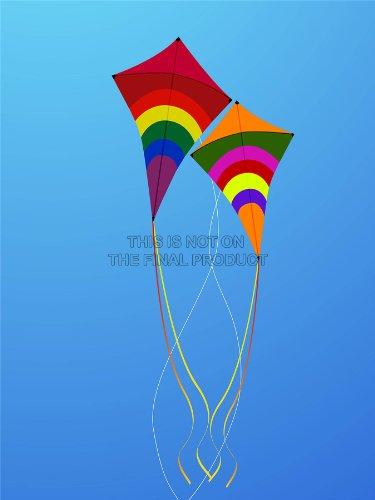 PAINTING ILLUSTRATION COLOURFUL KITES FLYING RAINBOW ART PRINT 12x16 '' POSTER MP3090B