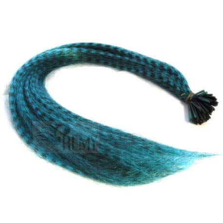 (RemyHaar.eu - Bunte Feder Strähnen Feather Extensions Grizzly I-Tip Kunsthaar 0,4g Farbeffekte Haarverlängerung - Türkis Feder, 10 Strähnen)