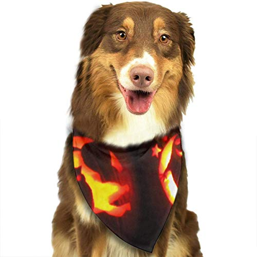 Gxdchfj Ghosts and Halloween Pumpkins Fashion Dog Bandana Pet Accessories Easy Wash Scarf