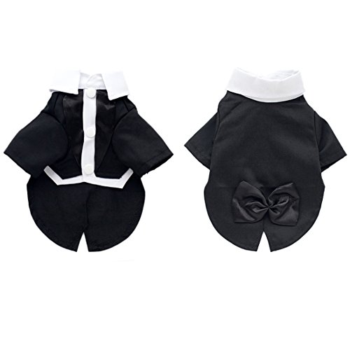 Hund Katze Gentleman Anzug Kleid formale schwarz Tuxedo Party Hochzeit (Anzug Schwarze Katze)