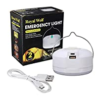 Emergency light easy to carry with power bank