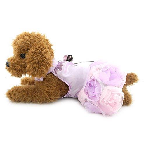 ranphy Prinzessin Kleid für kleine Hunde/Katzen Luxus Tutu Kleid Mädchen Haustier Kleidung - Tutu Couture Kostüm