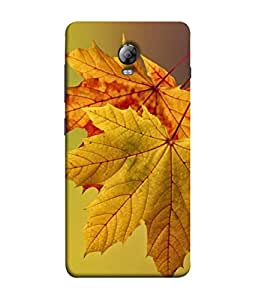 PrintVisa Stunning Leaves 3D Hard Polycarbonate Designer Back Case Cover for Lenovo Vibe P1 :: Lenovo Vibe P1 Turbo :: Lenovo Vibe P1 Pro
