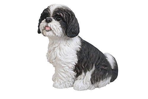 Vivid Arts XRL-SZ16-B Shih Tzu Hund, schwarz-weiß, sitzend, Kunstharz Gartendeko -