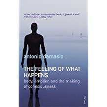 The Feeling Of What Happens: Body, Emotion and the Making of Consciousness by Antonio Damasio (2000-10-05)