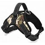 DINGG Keine Pfälen-Hundehunde Comfort Control für große Hunde im Training Walking-Kein Pulling, Tugging oder Choking 4 Farben,1,L